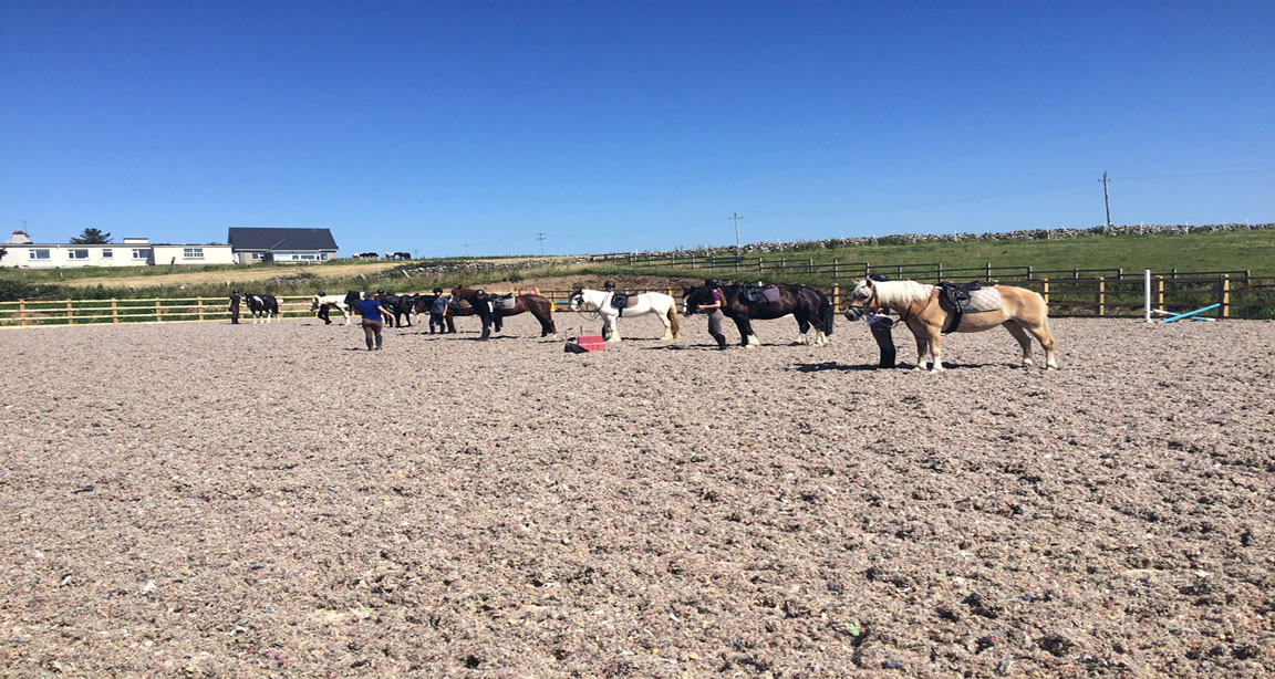 ENGLISH & HORSERIDING IN IRELAND - INTERNATIONAL - DONEGAL - COLLEGIENS